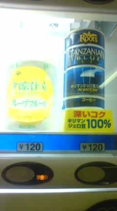 070822_2003~01.jpg